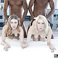 Cadence Lux and Anya Olsen Black Cock Foursome - image