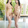 Sofi Ryan and Vicky Chase Threesome - image