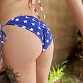 Americas Sweethearts - image